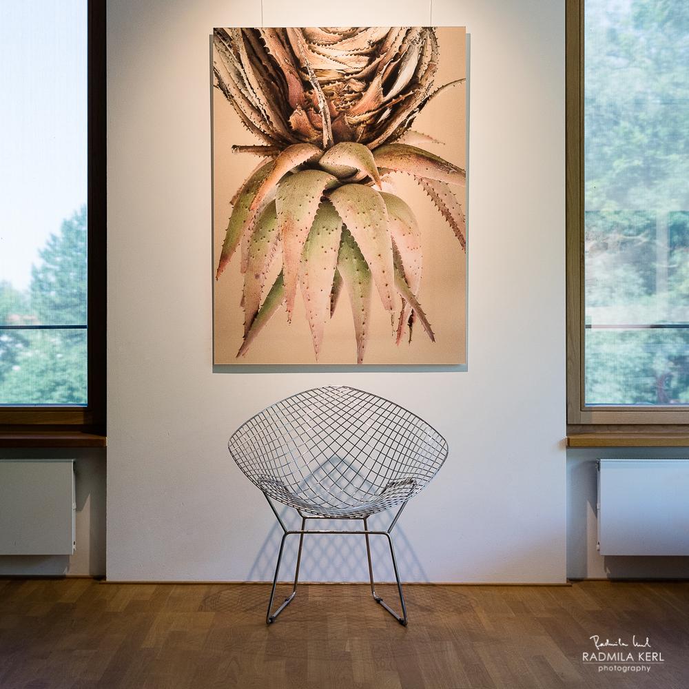 UPSIDE DOWN. Limitierte Auflage SOUTH HILL von Radmila Kerl in der Kraemerschen Kunstmühle. Alu Dibond matt 100 x 140 cm. 10 Stück.